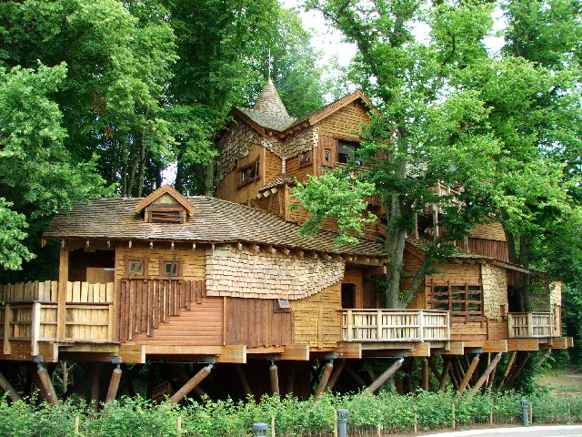 the_treehouse_-_geograph-org-uk_-_32426